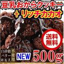 新発売 豆乳おからクッキーリッチカカオ500g 送料無料 国産大豆使用 カカオ分22%配