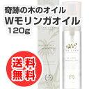 【送料無料】W COCO MORINGA OIL(Wココ モ...