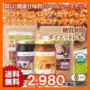 送料無料 低GI値 JAS有機認定の健康甘味料 ココナッツカヤカヤジャム・ココナッツネクターシロップ+ココナッツチップ・バナナチップセット