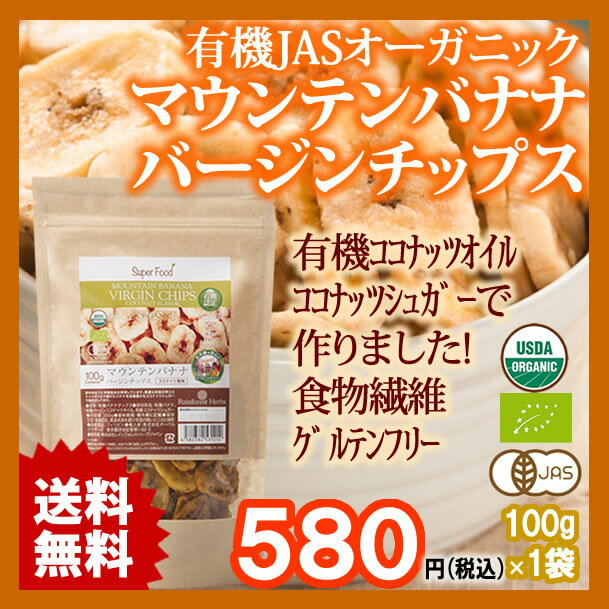 バナナチップ 有機JASオーガニック バナナチップス 100g 1袋 フィリピン産 有機ココナッツオイル 有機ココナッツシュガー使用 ORGANIC BANANA CHIP 保存料無添加