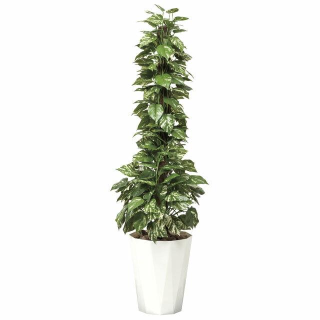 光の楽園:(509A300-27)ポトス1.5 92383 インテリア 光触媒人口植物 造花 観葉植物