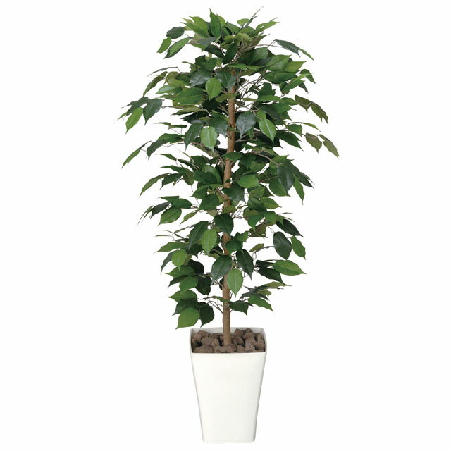 光の楽園:(189A170-36)フィカスベンジャミン1.2 92442 インテリア 光触媒人口植物 造花 観葉植物
