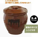 【!】漬物容器 丸かめ( 陶器製)5.4リットルお漬け物 容器05P27Jun14