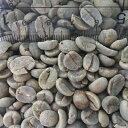【コーヒー生豆】ブラジルサントスNo.2/SC-18 30kg【for Professional】