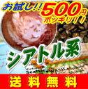 48%OFF!!■送料無料■500円!!コーヒー豆お試し!深煎りのコクと苦味がミルクとあいま...
