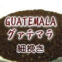 送料無料 グァテマラ 300g コーヒー豆 各種 コーヒーメーカー/コーヒーミル 手動 電動/ドリッパー/コーヒーポット等で利用可 送料込み お試し スーパーセール コーヒー豆 10P11Mar16