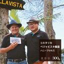 コスタリカベジャビスタ農園ハニープロセス【300g】 珈琲コーヒー美味しいコーヒー豆焙煎珈琲豆豆スペシャルティコーヒーコスタリカ