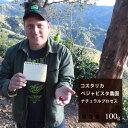 コスタリカベジャビスタ農園ナチュラルプロセス【100g】|珈琲コーヒー美味しいコーヒー豆珈琲豆スペシャルティコーヒーエスプレッソコスタリカ