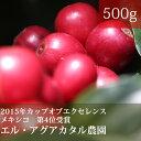 アグアカタル農園【500g】