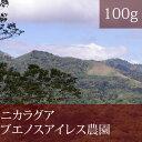 ニカラグアブエノスアイレス農園【100g】