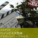 コスタリカベジャビスタ農園イエローハニープロセス【100g】