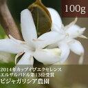 ビジャ・ガリシア農園【100g】