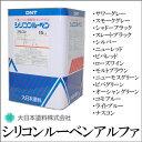 [R] 【送料無料】 シリコンルーベンアルファ (Bタイプ) [15kg] 大日本塗料・DNT・シリコン樹脂・トタン用・油性塗料