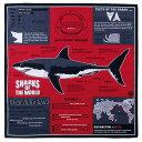 【サイエンス バンダナ ホホジロザメ ダークレッド 】動物 生物 魚類 サメ 鮫