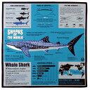 【サイエンス バンダナ ジンベエザメ ターコイズブルー 】動物 生物 魚類 サメ 鮫