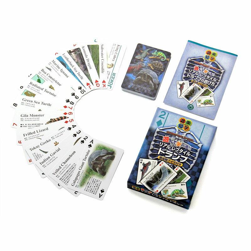 リアルレプタイルトランプ<爬虫類クイズ付き>子供知育玩具動物生物ゲームカメヘビトカゲカメレオン