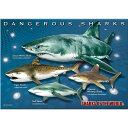 【生物 ミュージアム ジグソーパズル 危険ザメ B5サイズ/330ピース】動物 ゲーム 魚類 サメ 鮫