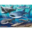 【生物 ミュージアム ジグソーパズル 巨大ザメ&深海ザメ A3サイズ/720ピース】動物 ゲーム 魚類 深海魚 サメ 鮫