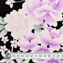 商用利用可 生地 ゆかた用 生地 和柄 浴衣 ブラック 桜に水仙・紫 ブロード生地 ネコポス対応