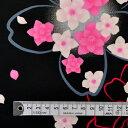商用利用可 生地 ゆかた用 生地 和柄 浴衣 ブラック 桜にバラ・ピンク ブロード生地 ネコポス対応