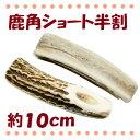 北海道産 鹿角ショート半割 約10cm 1個【犬用おもちゃ・鹿の角】