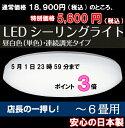 �����S�̓�{���ł���[18,900�~��5,600�~70%off]TOSHIBA(���Ń��C�e�b�N)�y��