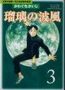 【漫画全巻セット】【中古】瑠璃の波風 <1〜4巻完結> かわぐちかいじ
