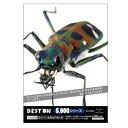 美貴本 BEST素材5000シリーズ vol.006 生きている昆虫の色と形(対応OS:WIN&MAC) 取り寄せ商品