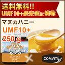 送料無料 UMF 10+ マヌカハニー 250g 【MGO(...