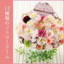 【送料無料】プリモモ50個セット 結婚式 ウェルカムボード プチギフト 二次会 パーティー ウェディング かわいい 人気 お菓子 日本製