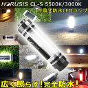 LEDライト 懐中電灯 ハンディライト 完全防水 防水 充電式【HORUSIS CHARGE LAMP CL-S