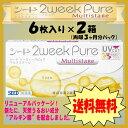 【DM便送料無料】シード 2ウィークピュア マルチステージ(遠近両用)6枚入り 2箱セット