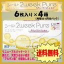 【送料無料】シード 2ウィークピュア マルチステージ(遠近両用)6枚入り 4箱セット(6ヶ月パック)