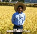 ※代引き不可/一部地域 送料加算※【金井農園】天日干し有機米 コシヒカリ 精米10kg