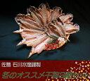 <3個まで同梱可能>【本当においしい干物を詰めました♪】佐島 石川水産謹製 冬のオススメ干物3種セット