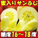 注文2000件以上!長野 小林農園完熟蜜入サンふじ5kg12?23玉家庭用 りんご リンゴ りんご