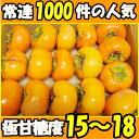 まもなく終了!奈良県 西吉野 柳澤果樹園 富有柿 訳あり 4kg 11〜18玉+増量(2〜3個