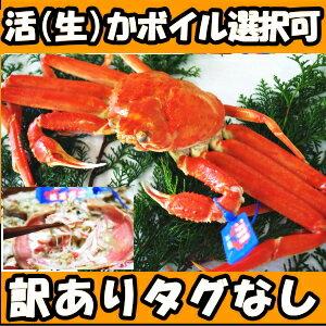 活(生)かボイル選択可!【送料無料】鳥取産 訳あ...の商品画像