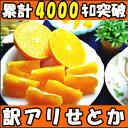 大人へ捧げる 最高級柑橘!みかんの大トロ和歌山 有田 生勇農園指定 せとか3kg家庭用 せとか 訳あり せとか 3kg せとか 訳あり 3kg せとか 家庭用 せとか みかん せとか わけあり せとか 楽天 みかん せとか せとか 送料無料