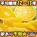 熊本ひまちゃん農園こだわり不知火10kg家庭用(デコポンと同品種)でこぽん 送料無料 デコポン 熊本