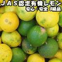 レモン 無農薬 訳あり 10kg B品 国産 JAS認定 有機 皮まで食べれる 佐賀 佐藤農場 レモン 家庭用