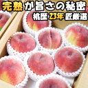 桃 山梨 特別栽培準拠 完熟の桃 贈答用 山梨 御坂町 鈴木農園 5kg 13-15玉入り