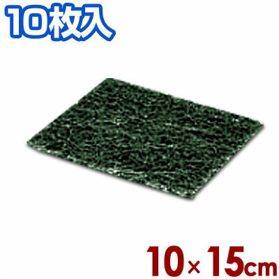 3M グリドルパッド 低温用 10枚入 ホルダー別売り/掃除 清掃 鉄板 磨き
