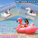 【空気入れ付き】うきわ 浮き輪 大きい BIG ビッグサイズ...