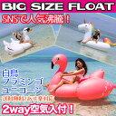 うきわ 浮き輪 大きい BIG ビッグサイズ フラミンゴ 白...