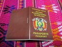 ミニチュア ボリビア パスポート