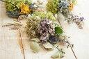 楽天Coppe Craft Workshopドライフラワーブーケスワッグ/契約農園で育てた無農薬の国産ドライフラワーを束ねたナチュラルな花飾り/世界に一つだけの壁飾り/ナチュラルドライフラワー/壁飾り/棚飾り/ボタニカル/ドライフラワー/スワッグ/あじさい/アナベル/オーガニック