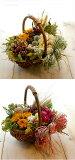 马尔凯发现干花篮] [Doraifurawaarenji] [自然] [自然干燥插花篮国[ナチュラル ドライフラワー カントリー バスケット アレンジ  花かごにドライフラワーがいっぱい♪好みの色合いで製作します 【楽ギフ包装】 【楽