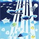 気音間 注染手ぬぐい Marine dive【メール便可】海/手拭い/てぬぐい/ダイビング/スキューバ/夏/沖縄/サンゴ
