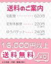 ★最大500円OFFクー...